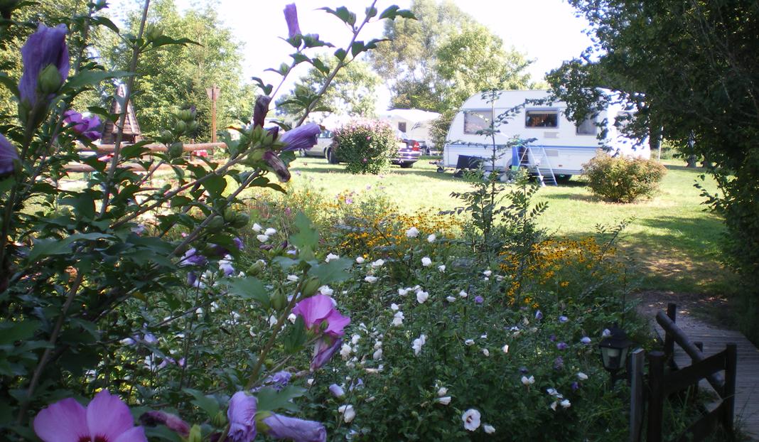 Camping Moulin de Collonge ****