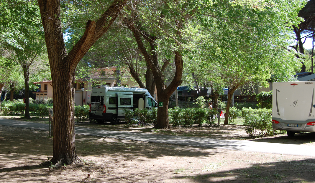 Camping Feniglia *